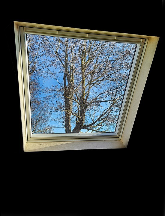 Window, Velux, Light, Sky, Landscape, Field, Color